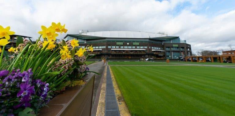 Wimbledon: la decisión sobre el aplazamiento o la cancelación se decidirá la próxima semana