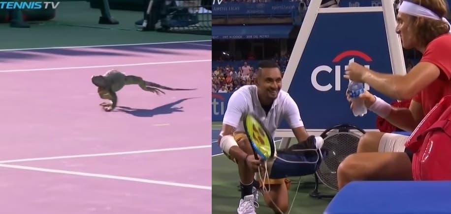 [VIDEO] 10 Momentos que nunca pensaste ver en una cancha de tenis