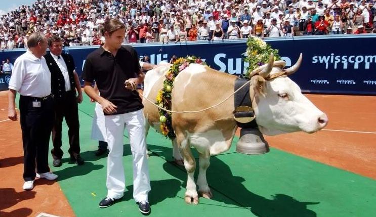 [VIDEO] Hace 16 años, Federer ganó su primer título en casa y recibió una vaca